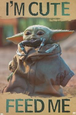 Star Wars: The Mandalorian - Feed Me