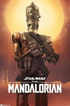 Star Wars: The Mandalorian - IG-11