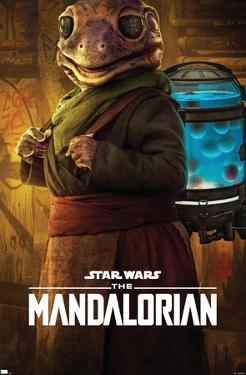 Star Wars: The Mandalorian Season 2 - Frog Lady
