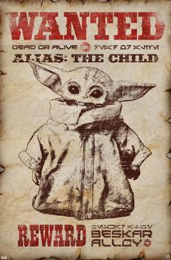 Star Wars: The Mandalorian - Wanted
