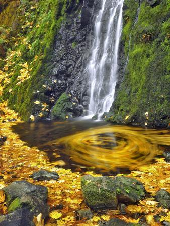 https://imgc.allpostersimages.com/img/posters/starvation-creek-waterfall-in-fall-columbia-river-gorge-oregon-usa_u-L-PN6XNY0.jpg?p=0