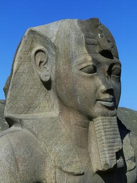 Statue of Ramses II, Great Temple of Amun, Tanis, Egypt