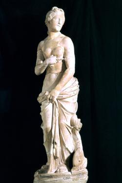 Statue of the Chaste Venus, from Carthage