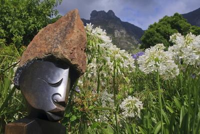 https://imgc.allpostersimages.com/img/posters/statue-with-agapanthus-and-table-mountain-behind_u-L-PQ8V4H0.jpg?p=0