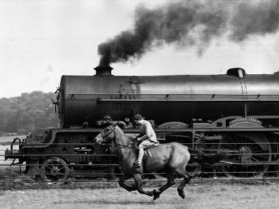Steamy Steed