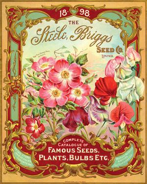Steele Briggs Seed Catalogue