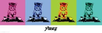 Steez-Dj Kitty by Steez