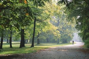 Englischer Garten in Munich by Stefano Amantini