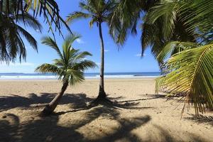 Las Baulas Marine National Park, Playa Grande Beach. by Stefano Amantini