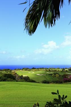 Sandy Lane, Green Monkey Golf Course by Stefano Amantini