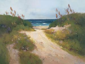 Beach Trail 1 by Stefano