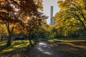 Fall Foliage at Central Park, Manhattan, New York, USA by Stefano Politi Markovina