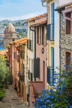 Old Town Street, Collioure, Languedoc-Roussillon, France by Stefano Politi Markovina