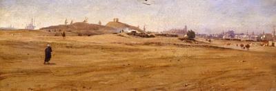 View of Desert with Dunes