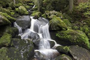 Triberger Waterfalls, Triberg (Village), Black Forest, Baden-Wurttemberg, Germany by Steffen Beuthan