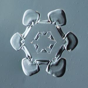 Stellar Plate Snowflake
