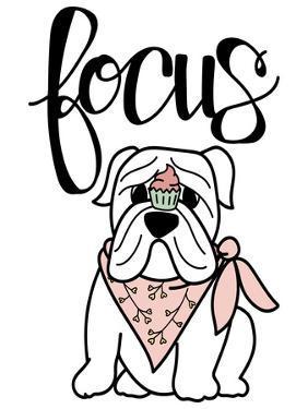 Focus Frenchie by Stephanie Dicks