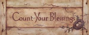 Count Your Blessings by Stephanie Marrott