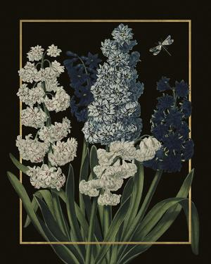Ornamental - Blois Luxe by Stephanie Monahan
