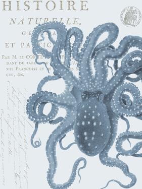 Sea Creatures - Sorrento by Stephanie Monahan
