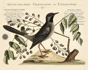 Vintage Bird - Marseilles by Stephanie Monahan