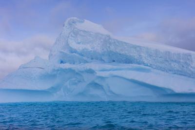 A Large Iceberg Floats in Cierva Cove by Stephen Alvarez