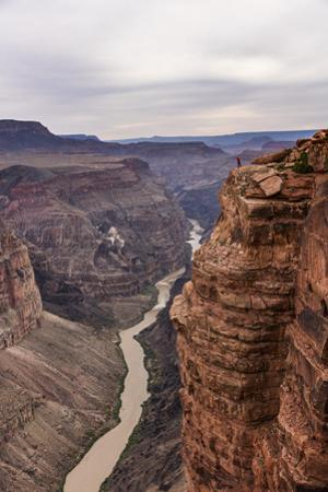 A man standing at Toroweap Point in the Grand Canyon. by Stephen Alvarez