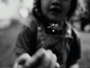 A Young Girl Reaches Out for a Firefly by Stephen Alvarez