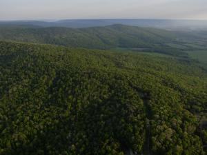 An Aerial View of the Cumberland Plateau Near Sewanee by Stephen Alvarez