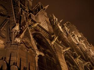 Gargoyles Leer Down From the Walls of Notre Dame De Paris by Stephen Alvarez