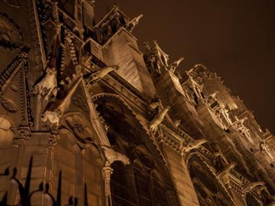 Gargoyles Leer Down From the Walls of Notre Dame De Paris by Stephen Alvarez