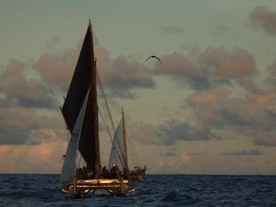 Hokule'A, a Double Hulled Canoe and a Polynesian Voyaging Canoe by Stephen Alvarez