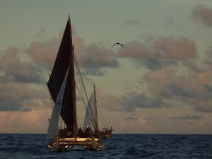 Hokule'A, a Double Hulled Canoe and a Polynesian Voyaging Canoe by Stephen Alvarez