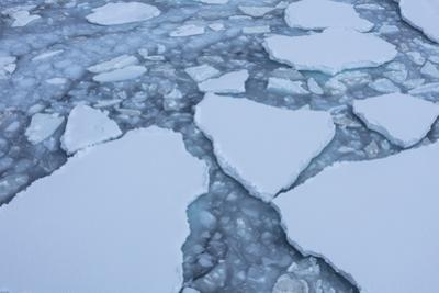 Sea Ice Creates Texture on the Water's Surface by Stephen Alvarez