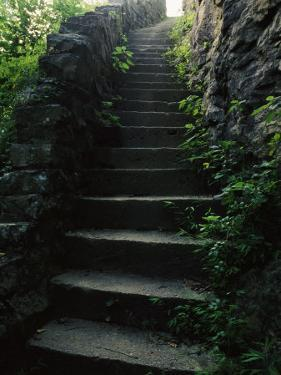 Stone Stairs Lead to the Top of Morgans Steep in Sewanee by Stephen Alvarez