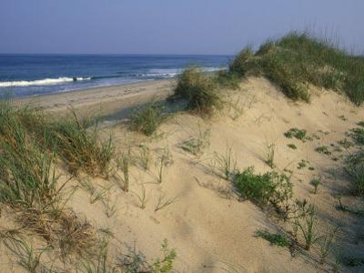 The Atlantic Ocean Rolls in Along the Dunes at Avon by Stephen Alvarez
