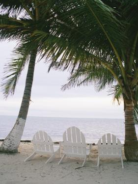 White Beach Chairs Line the Shore of the Caribbean Sea in Belize by Stephen Alvarez