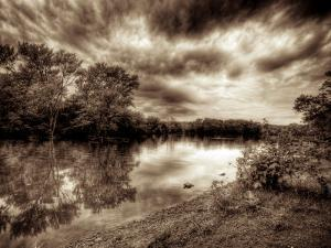Calming by Stephen Arens