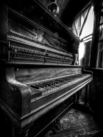 Musical Dreams by Stephen Arens