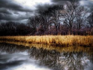 Spring Storm by Stephen Arens