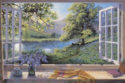 Bluebells by Stephen Darbishire