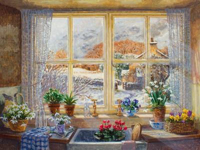 Unexpected Snowfall by Stephen Darbishire