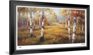 Forest Meadow by Stephen Douglas