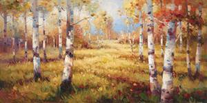 Meadow Clearing by Stephen Douglas