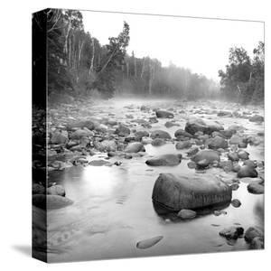 Temperance River by Stephen Gassman