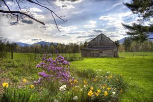Spring Barn by Stephen Goodhue