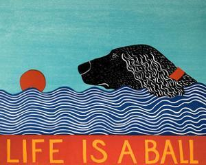 Life Is A Ball Flat Coat Black by Stephen Huneck