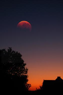 A Total Lunar Eclipse by Stephen O'Meara