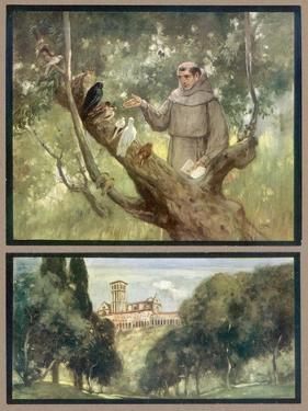 Francesco and Birds by Stephen Reid