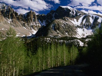Wheeler Peak and Trees, Great Basin National Park, Nevada, USA